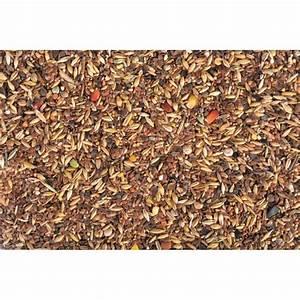Graines De Tournesol Pour Oiseaux : mix de graines pour oiseaux hiver 1 kg ~ Dailycaller-alerts.com Idées de Décoration