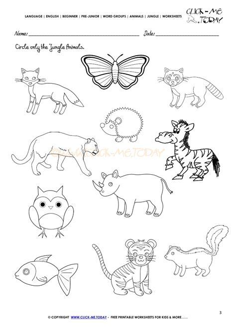 jungle animals worksheet activity sheet circle 3