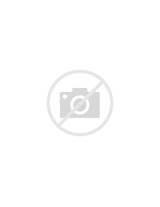 Platypus coloring page