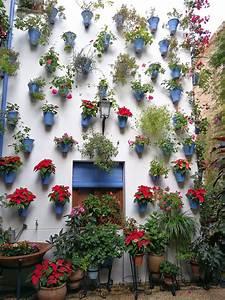 El Patio De La Muralla  U263c Patios De San Basilio  C U00f3rdoba