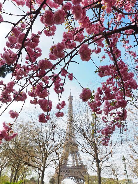 paris   spring world  wanderlust