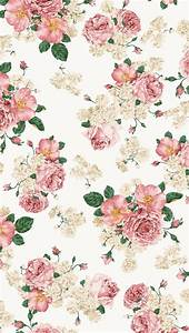Flower backgrounds, Flowers background iphone and iPhone ...