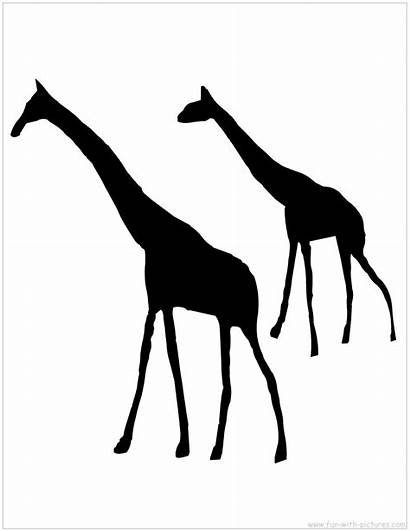 Silhouette Animal Silhouettes Animals African Clip Printable