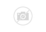 Dalmatian Dog coloring page