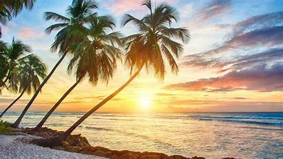 Tropical Wallpapers Sunset Beach Palm Cave Tree