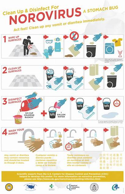 Norovirus Disinfection Disinfect Disease Clean Clipart Posters