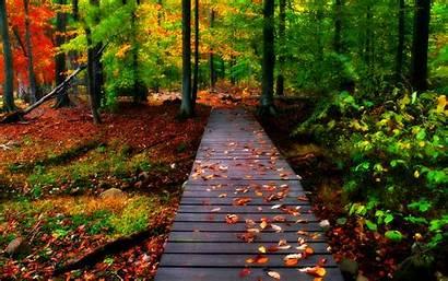 Desktop Nature Wallpapers Autumn Wallpapertag