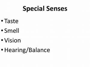 Special sensory pathways