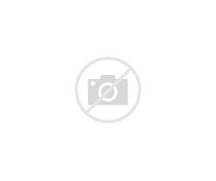 Origami Rabbit by Robe...