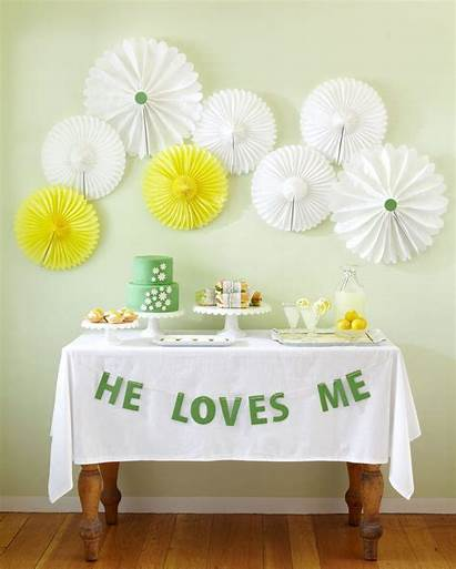 Shower Bridal Spring Daisy Party Decorations Showers