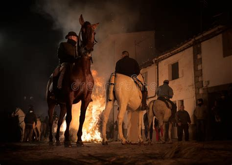jumping fire horses fear above without horse rider
