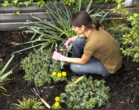 Garten Und Landschaftsbau Aufgaben by Low Maintenance Landscaping Gardening The Farmer S