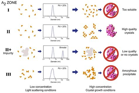 dynamic light scattering protein crystallization screening by using dynamic light