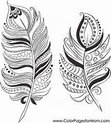 Feathers Coloring Feather Adult Colouring Duster Printable Drawing Mandala Adults Dream Catcher Template Mom sketch template