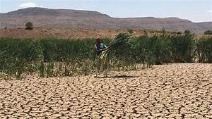 Le Forum Africa Climate Talk, les 14 et 15 octobre à ...