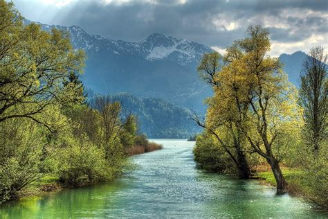 photo river  trees forest green landscape