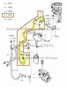 New Oem Ac Evaporator To Compressor Hose 2010