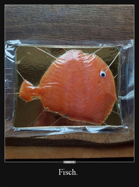 fisch lustige bilder sprueche witze echt lustig