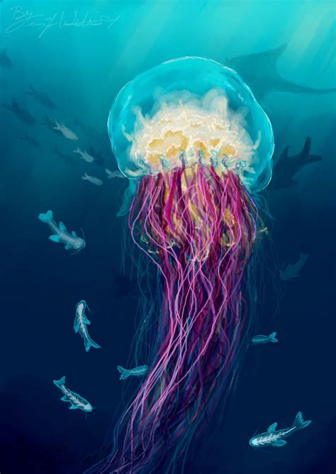 jellyfish pictures kids search
