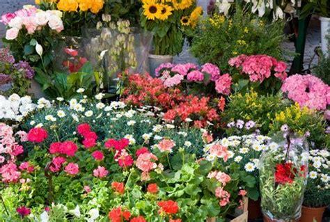 wur bloemen opportunity for flower branch to blossom wur