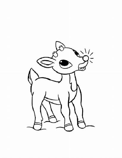 Coloring Rudolph Reindeer Nosed Pages Christmas Clarice