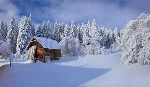 Winter fairytale, heavy snowfall ... | Stock Photo | Colourbox