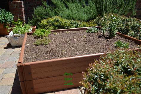 raised herb garden design photograph raised garden bed