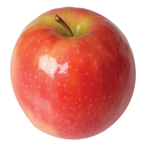 wholesale garden apple pink semi tri city nursery