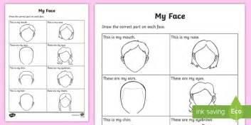 facial features worksheet worksheet teacher