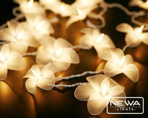 white frangipani flower lights string lights fairy