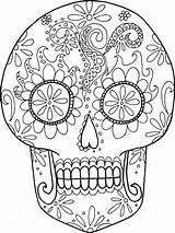 Coloring Skeleton Dead Sheets Skull Sugar Skulls Minds Blossoming Sized Adult Pages Skeletons Teachersdojo Paper Turtle Sea Flowers sketch template