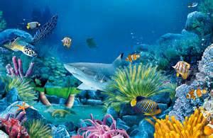 Resultado de imagen de sea life images