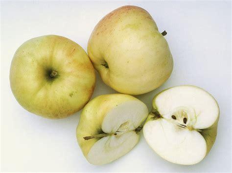 cuisine rustique grise belchard chanteclerc quelle pomme pour quelle recette