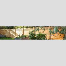 Sichtschutz Für Den Garten  Infos Und Ratgeber Obi