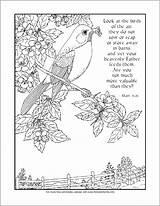 Coloring Birds Printable Flandersfamily Info Bird Pages Flanders sketch template