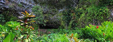 Fern Grotto Kauai Boat Tours by Waimea Fern Grotto Tour Kauai Hawaii