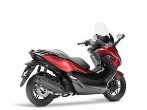 Honda Forza 125 2018 : honda forza 125 2018 farben und preis ~ Melissatoandfro.com Idées de Décoration