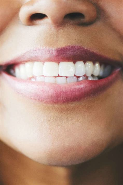 teeth names diagram types  functions