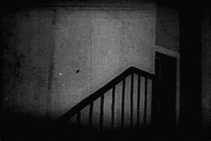 black and white nosferatu gif   WiffleGif
