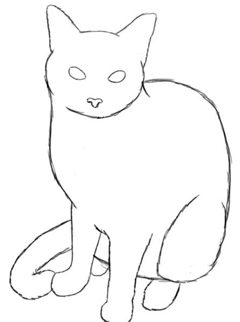 draw  cat drawing drawings cat drawing
