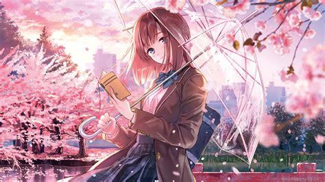 3840x2160 Anime Girl Cherry Blossom Season 5k 4k Hd 4k