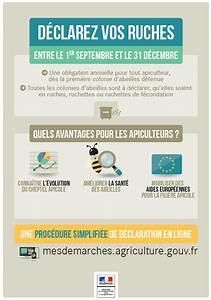 Récépissé De Déclaration D Achat En Ligne : la d claration de ruches du 1er septembre au 31 d cembre alim 39 agri ~ Medecine-chirurgie-esthetiques.com Avis de Voitures