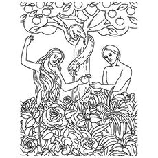 HD wallpapers days of creation coloring pages