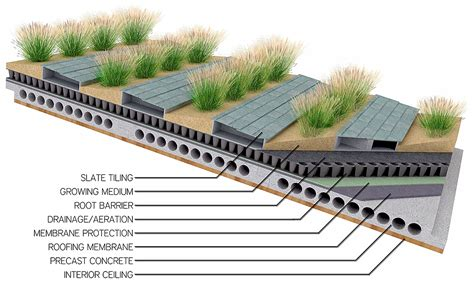 green roof plan design thesis project jon freeberg archinect