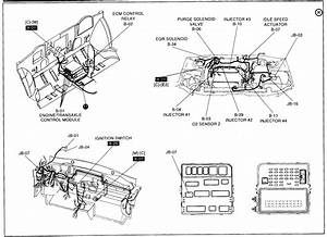 Kia Sedona Fuel Relay Diagram   29 Wiring Diagram Images