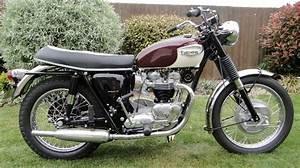 1967 T120