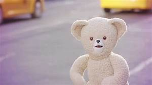 Snuggle Bear With Cat Eyes | 2017 - 2018 Best Cars Reviews
