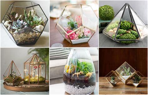 Terrarium Im Glas by Zauberhafte Welt Im Glas Diy Terrarium Machen