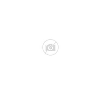 Retinal Detachment Retina