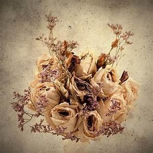 quadri fiori secchi Composizione fiori
